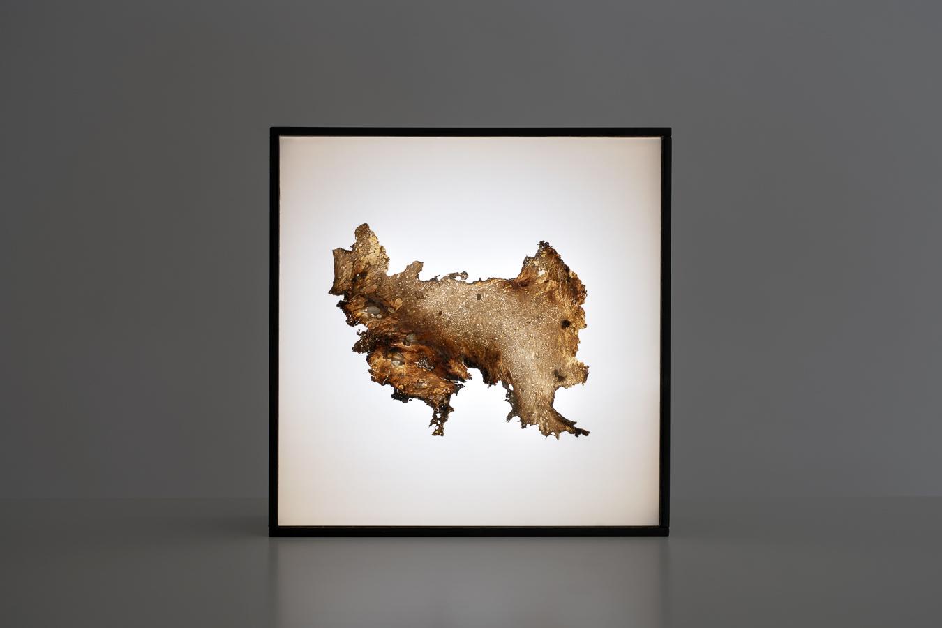 dialectical landscape-8